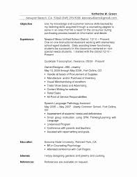 Resume Objectives For Customer Service Customer Service Resume Objective Examples Elegant Resume Goals And 16