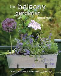 Small Picture The Balcony Gardener Supplying ready made Container Gardens