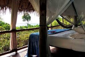 luxury tree house resort. Tree House Lodge Chole, Tanzania, Africa Luxury Resort