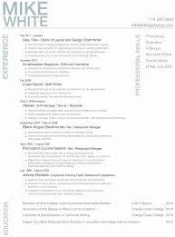 Resume Format Summary