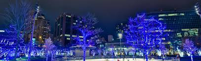 City Lights Festival Grand Rapids Best Places To See Christmas Lights In Grand Rapids