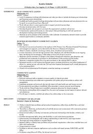 Community Liaison Resume Samples Velvet Jobs