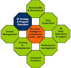 the areas of responsibility of the business intelligence competency center bicc business intelligence consultant job description