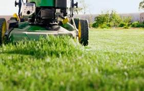Six Lawn Care Mistakes To Nix This Old House