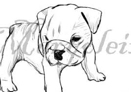 bulldog puppy drawing. Unique Puppy Drawing Of A Bulldog Drawn Puppy   Pencil And In R