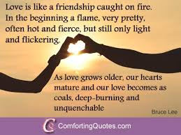 Quotes About Strong Friendships Gorgeous Quotes About Strong Friendships 48 QuotesBae