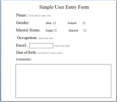 Create User Entry Forms In Word 2010 Microsoft Office And Create