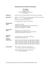 Combined Chronological Functional Resume Sample Unique