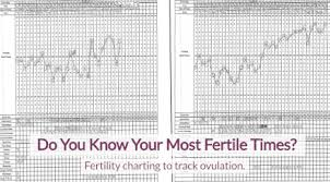 Do You Know Your Most Fertile Times Aim Womens Wellness