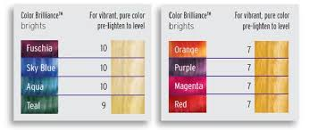 Color Formulation Chart Ion Hair Color Formulation Chart Best Picture Of Chart