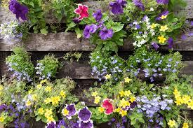 Zur haustür hin oder im garten ist häufig eine kleine treppe mit drei, vier stufen notwendig, um höhenunterschiede zu überwinden. Blumenkasten Selber Bauen Mit Folie Oder Ohne