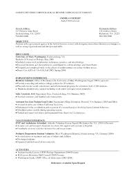 Hybrid Resume Template Magnificent Hybrid Resume Example Hybrid Resume Samples Example Reverse