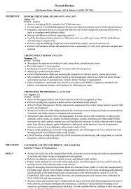 Credit Analyst Resume Risk Credit Analyst Resume Samples Velvet Jobs