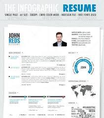 Infographic Resume Template Noxdefense Com