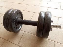 york weights. fitness equipment york cast iron dumbbell bar weight plate plates set york weights