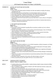 Software Developer Resume Samples Net Software Developer Resume Samples Velvet Jobs