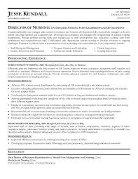 nursing resume nl   sales   nursing   lewesmrsample resume  nursing director resumes of resume sle