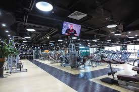 boxing gyms in dubai tried and tested multi club