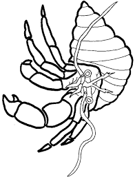 Small Picture Hermit Crab coloring page Animals Town animals color sheet