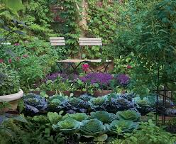 Small Picture 32 best For our Backyard images on Pinterest Garden plants