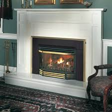 um size of elegant interior and furniture layouts pictures new napoleon gas fireplace inserts reviews