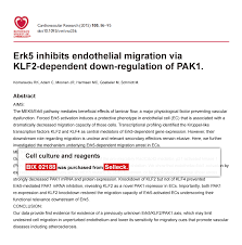 bix mek inhibitor reviews product use citations cited by 4 publications