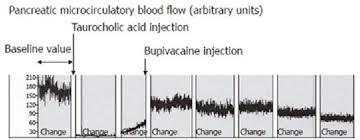 Современные подходы к лечению острого панкреатита обзор  Через 30 мин после инъекции таурохолевой кислоты для индуцирования острого панкреатита