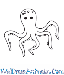 Small Picture How to Draw an Octopus