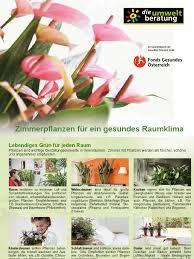 Zimmerpflanzen Poster Wohnen Houseplant Ethnobotany