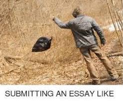 the nuiances of write essay for me world trade council the nuiances of write essay for me