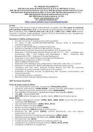 Sample Security Consultant Resume Sap Functional Consultant Sample Resume Sap Functional