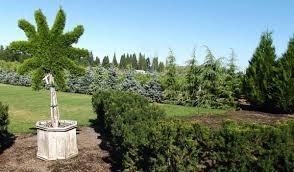 Small Picture Winter Garden Design Ideas Class With Paul Taylor Farmington Gardens