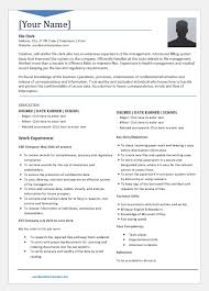 File Clerk Resume Templates For Word Word Excel Templates