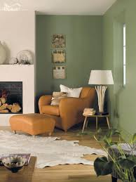 Green Living Room Ideas New Design