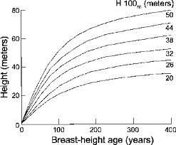 Douglas Fir Growth Chart 2 Site Index Or Age Versus Height Curves For Douglas Fir
