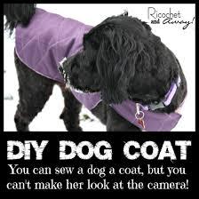 diy dog coat warning