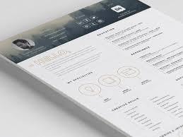 Impressive Resume Free Impressive Resume Template With Icon Set
