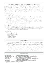 dba resume sample resume resume samples for server resume db2 udb dba resume  examples