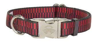 Patterned Dog Collars Best Buy Spicy Regency Stripes Premium Dog Collar Online