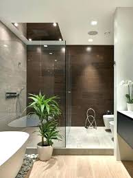 modern bathroom remodels. Modern Small Bathroom Design. Brilliant Design Remodel Ideas Pinterest Remarkable Best Remodels