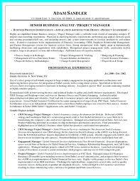 Sample Business Resume Resume Samples For Business Analyst
