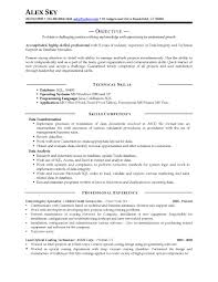 Resume Samples Professional Quick View