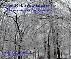winter a pictorial essay by carla j zambelli arts  view winter 2014 a pictorial essay by carla j zambelli