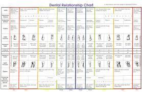 How To Read Iridology Chart Dental Relationship Chart