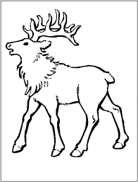 Small Picture Elk coloring page Animals Town animals color sheet Elk