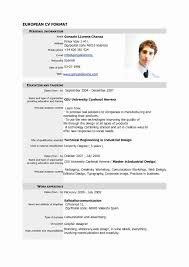 Federal Government Resume Template Download Beautiful Resume Format