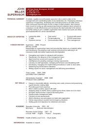 One Page Resume Example Delectable A One Page Supervisors Resume Example That Clearly Lists The Team