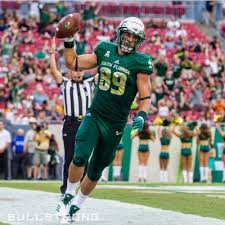 NFL Draft prospects in the 2018 Bad Boy Mowers Gasparilla Bowl