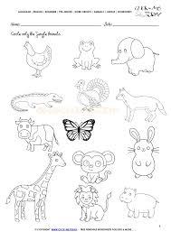 Animal Worksheet For Kindergarten – desiaustralia.co