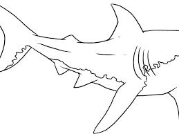 Shark Outline Baby Shark Template